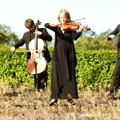 Arta String Quartet